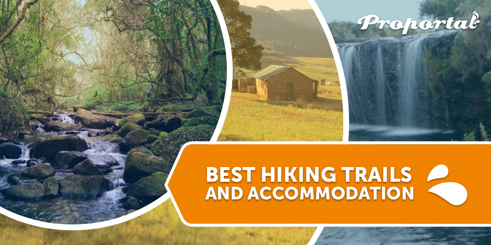 Best-Hiking-Trails
