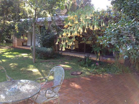 Foxwood house sandton accommodation joburg tourism for Foxwood house