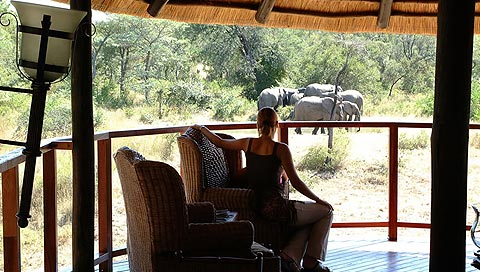Harvey World Travel Centurion - Exclusive Shambalala Game Lodge, South Africa