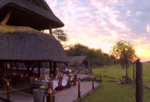 View holiday package : At The Hide Safari Camp and Changa Safari Cam, Zimbabwe