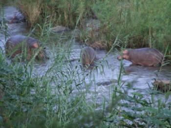 Lukafrica Riverside Chalets & Safaris in Tzaneen