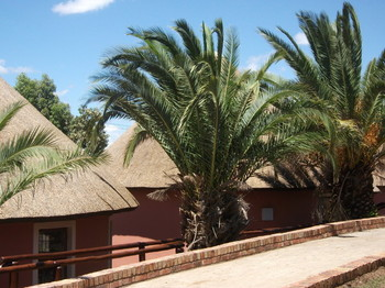 Sangweni Lodge B&B in Alice
