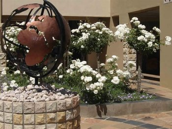 Acacia Lodge in Bloemfontein