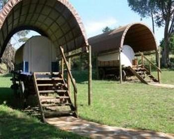 Somabula Nature Reserve in Cullinan