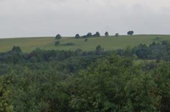 Hartfell Farm in Dullstroom
