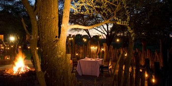 Ingala Lodge in Madikwe Game Reserve