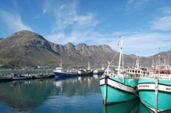 Montana Muse in Hout Bay